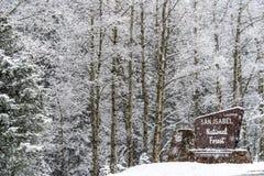 Nieve del invierno que cae en bosque del Estado del san Isabel Imagen de archivo