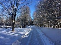 Nieve del invierno y el camino imagen de archivo