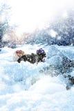 Nieve del juego Foto de archivo libre de regalías