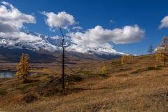 Nieve del otoño del árbol de las nubes de las montañas Fotos de archivo libres de regalías