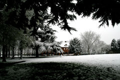 Nieve en abril Foto de archivo libre de regalías