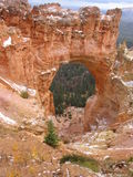 Nieve en Bryce Canyon, Utah, los E.E.U.U. Fotografía de archivo