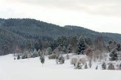 Nieve en campo de golf en el invierno, fondo del bosque, espacio de la copia Fotos de archivo