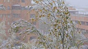 Nieve en ciudad almacen de metraje de vídeo
