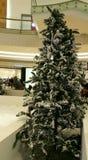 Nieve en el árbol de navidad interior Fotos de archivo libres de regalías