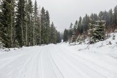 Nieve en el camino con los árboles en campo Foto de archivo libre de regalías