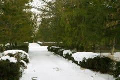 Nieve en el camino en el parque Fotografía de archivo libre de regalías