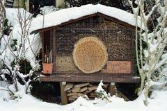 Nieve en el hotel del insecto con las abejas y los wesps salvajes Fotos de archivo