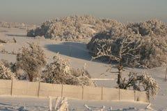 Nieve en el jardín Imagen de archivo libre de regalías