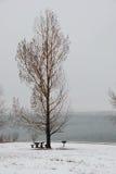 Nieve en el lago Imágenes de archivo libres de regalías