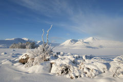 Nieve en el montaje negro Imágenes de archivo libres de regalías