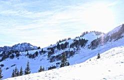 Nieve en el top Imagen de archivo libre de regalías