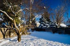 Nieve en final de la yarda Imágenes de archivo libres de regalías