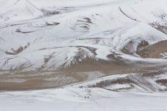 Nieve en gran parque nacional de las dunas de arena en Colorado Fotografía de archivo libre de regalías