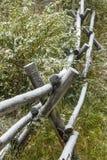 Nieve en la cerca de carril en arbustos, Wyoming Fotografía de archivo libre de regalías