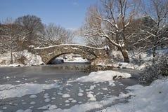 Nieve en la charca Imagen de archivo libre de regalías