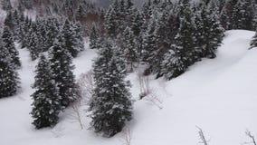 Nieve en la colina Foto de archivo libre de regalías