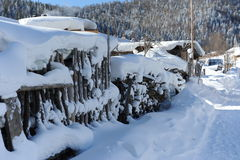 Nieve en la pared wattled fotos de archivo libres de regalías