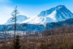Nieve en las montañas Fotografía de archivo