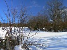 Nieve en las montañas (Vercors), Francia Foto de archivo