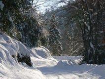 Nieve en las montañas (Vercors), Francia Fotos de archivo libres de regalías