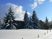 Nieve en las montañas (Vercors), Francia Foto de archivo libre de regalías