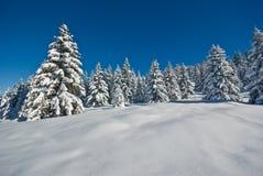 Nieve en las montan@as foto de archivo