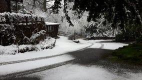 Nieve en los lagos Foto de archivo libre de regalías