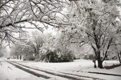 Nieve en los suburbios Imagen de archivo libre de regalías