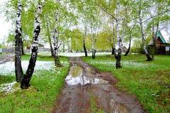 Nieve en mayo Imágenes de archivo libres de regalías