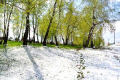 Nieve en mayo Imagen de archivo