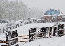 Nieve en mayo Fotos de archivo