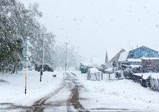 Nieve en mayo Fotografía de archivo libre de regalías