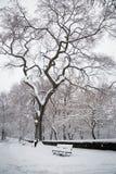 Nieve en Nueva York Imagen de archivo libre de regalías