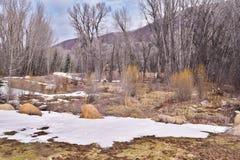 Nieve en otoño Imagenes de archivo