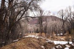 Nieve en otoño Imagen de archivo libre de regalías
