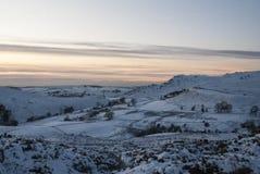 Nieve en parameras Fotografía de archivo libre de regalías