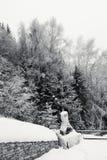 Nieve en pequeño patio trasero con la barbacoa de piedra fotos de archivo libres de regalías