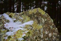 Nieve en piedras cubiertas de musgo fotografía de archivo