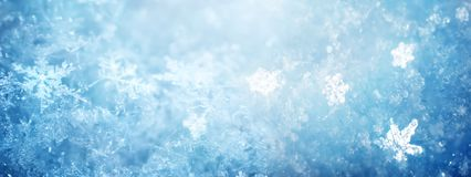 Nieve en primer del invierno Imagen macra de copos de nieve, holid del invierno imágenes de archivo libres de regalías
