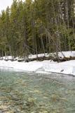 Nieve en riverbank foto de archivo libre de regalías