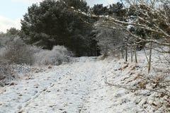 Nieve en un camino del camino de tierra/de campo que lleva en un bosque cerca de un pueblo de Eifel imagen de archivo