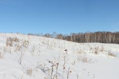 Nieve en una cuesta de la colina en el invierno Foto de archivo