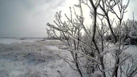 Nieve enero metrajes