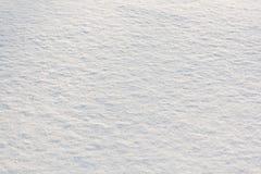 Nieve fresca Fotos de archivo libres de regalías