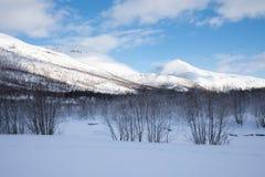 Nieve fresca en el condado de Troms después de un invierno corto en mayo Un paisaje escarchado hermoso en paisaje del invierno d fotografía de archivo libre de regalías