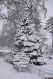 Nieve fresca en los jardines de Jephson, balneario de Leamington, Reino Unido - paisaje del invierno, diciembre de 2017 Fotografía de archivo