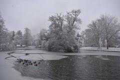Nieve fresca en los jardines de Jephson, balneario de Leamington, Reino Unido - paisaje del invierno, diciembre de 2017 Fotografía de archivo libre de regalías