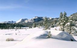 Nieve fresca, montañas, árboles, cielo Imágenes de archivo libres de regalías