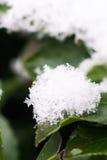 Nieve hermosa Foto de archivo libre de regalías